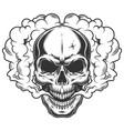 skull in smoke vector image vector image