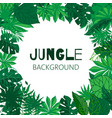 tropical jungle frame green vector image
