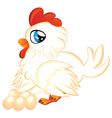 Cartoon Hen with Eggs vector image