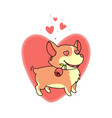 dog with a rose in his mouth in love on a vector image vector image
