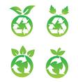 Eco Fruit vector image vector image