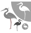 Heron vector image vector image