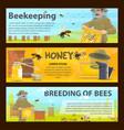 honey bee breeding and beekeeping farm banner vector image vector image