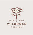 wild rose flower logo icon vector image vector image