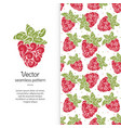 beautiful strawberry seamless pattern vector image vector image