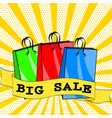big sale poster in retro comic pop art style with vector image vector image