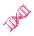 dna human symbol vector image vector image