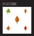 flat icon foliage set of frond foliage linden vector image vector image