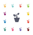 houseplant flat icons set vector image