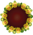 round wreath of yellow blossoming sunflowers vector image