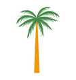 tree palm symbol vector image vector image