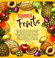 tropical fruit sketch poster summer berry frame vector image