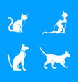 cat icon blue set vector image