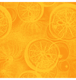 Hand drawn orange or lemon citrus fruit vector image vector image