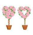 hearts set of trees in pots vector image vector image