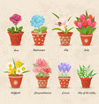vintage collection of planted different lovely vector image vector image