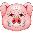 angry pig head cartoon mascot vector image vector image