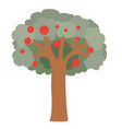 apple tree with red apples flat isolated object vector image vector image