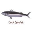 dash-and-dot goatfish color vector image