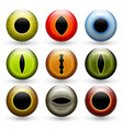 different animals eyes set vector image