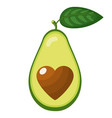 fresh half avocado with heart isolated on white vector image vector image