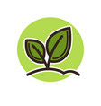plant icon with leaves on stems that grow from vector image vector image