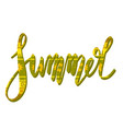 summer handwritten lettering with tribal vector image vector image