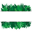 tropical palm leaves banner vector image vector image