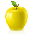 yellow apple on white background vector image vector image