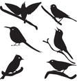 Bird Silhouettes bird on branch vector image vector image