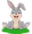 cartoon funny rabbit sitting on the grass vector image vector image