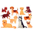 cartoon puppy and dog happy puppies with smiling vector image