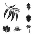 forest and nature black icons in set collection vector image