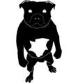 smart dog vector image vector image