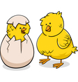 easter chicks cartoon vector image