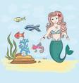 mermaid and fish rocks and seaweed shell vector image