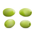 festival olives oil icon set realistic style vector image vector image