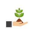 hands holding seedling ecology concept vector image