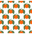 seamless pattern with tangerines and leaves on vector image vector image