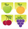sunny fruit vector image