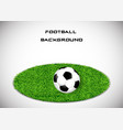 the ball on the grass soccer background vector image vector image