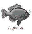 anglerfish color vector image