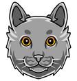 cat head mascot logo design vector image