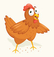 chicken vector image vector image