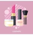 Cosmetic Set Flat Design Object vector image vector image