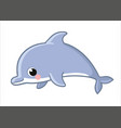 cute dolphin isolated on a white background vector image vector image