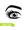 Eye icon 14 vector image vector image