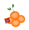 Mandarin Orange and Fortune Card vector image vector image