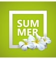 Summer label with exotic frangipani flowers vector image vector image