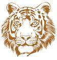 Tiger Stencil vector image